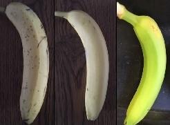 Bananas, very ripe, ripe, not ripe